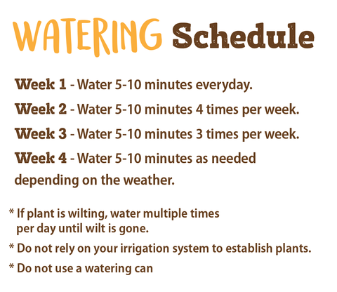 planting directions watering schedule