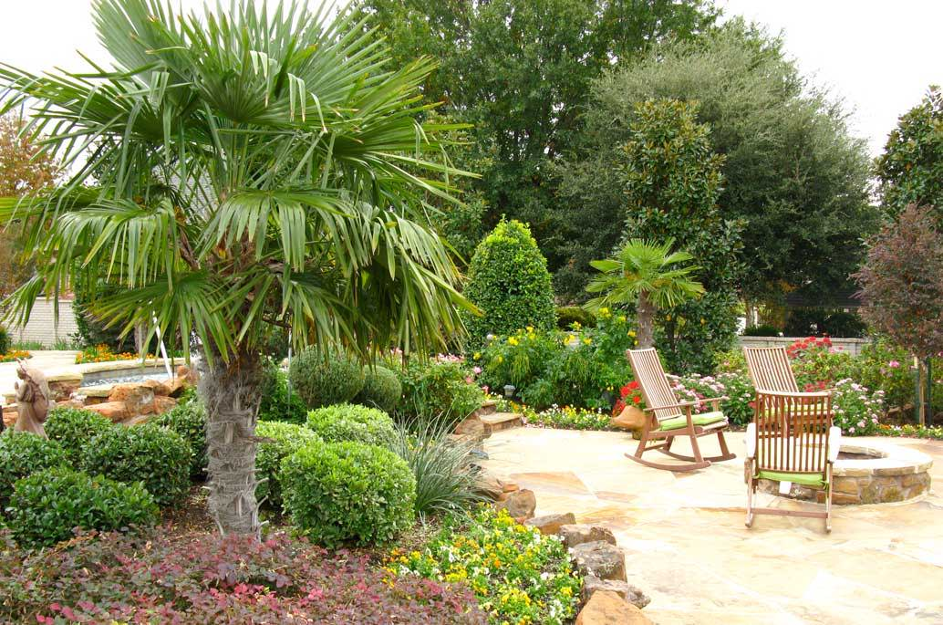 how to care for tropical plants