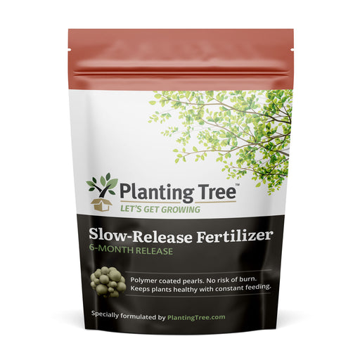 PlantingTree Slow Release Fertilizer