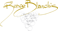 Ronco Blanchis - white wine from Collio, Friuli, Italy