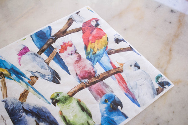 Birds Rice Paper Set