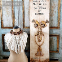 Re-design Decor Transfer - Botanical Magazine