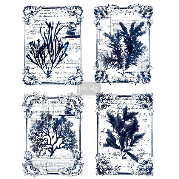 Re-design Decor Transfer - Seaweed Transfers > rub on transfers > redesign transfers