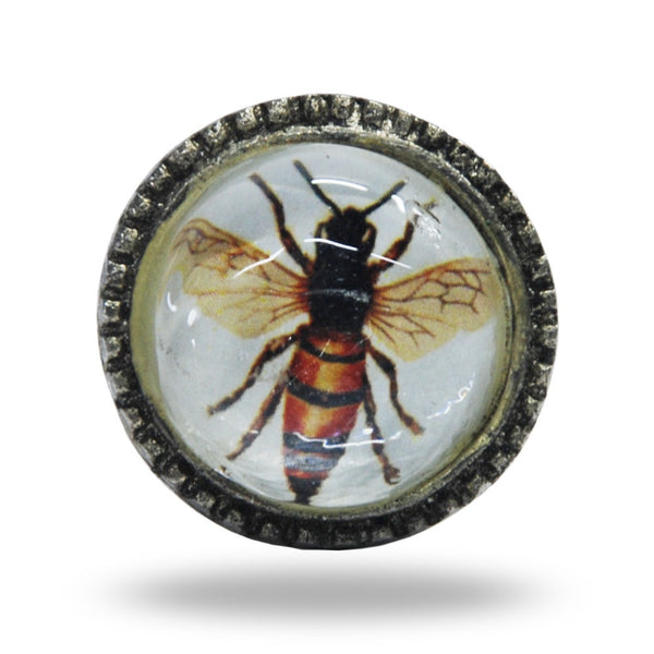 Metal and Glass Bee Knob Handles and Knobs