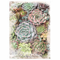 Zuri -  Decoupage Decor Tissue Paper