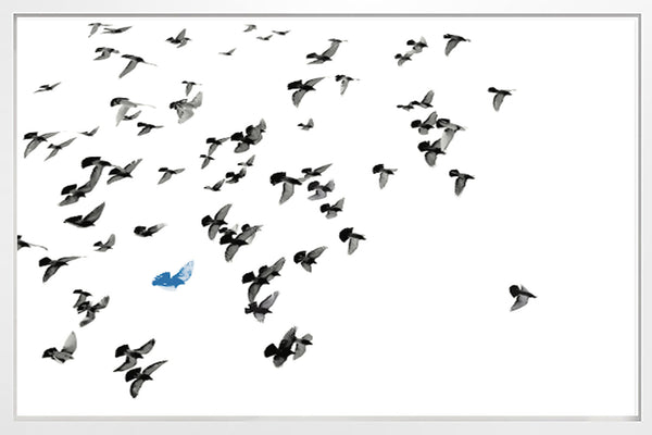 Flock with Blue Bird