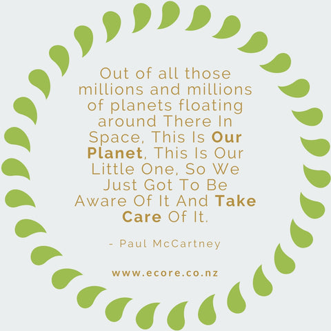 Out of all those millions and millions of planets floating around there in space, this is our planet, this is our little one, so we just got to be aware of it and take care of it. - Paul McCartney