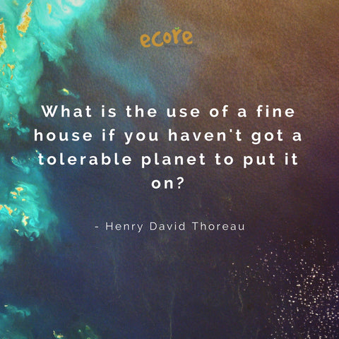 What is the use of a fine house ifyou haven't got a tolerable planet to put it on? - Henry David Thoreau