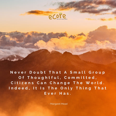 Never doubt that a small group of thoughtful, committed citizens can change the world. Indeed , it is the only thing that ever has. - Margaret Mead
