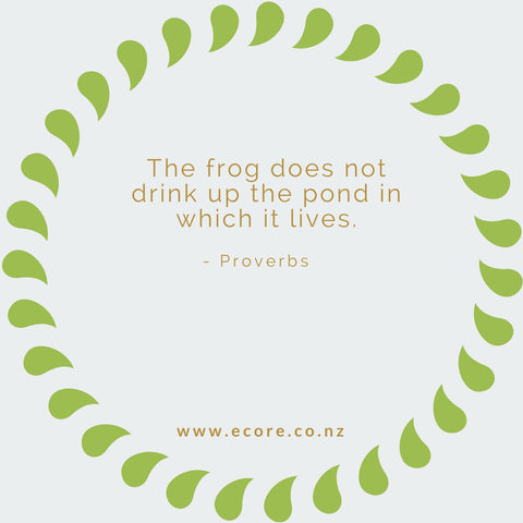The frog does not drink up the pond in which it lives. - Proverbs