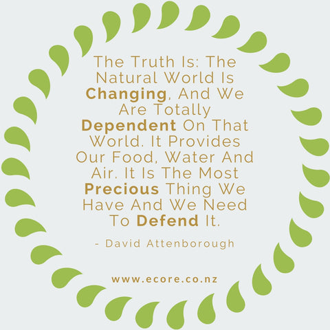 The truth is: The natural world is changing, and we are totally dependant on that world. It provides our food, water and air. It is the most precious thing we have and we need to defend it. - David Attenborough