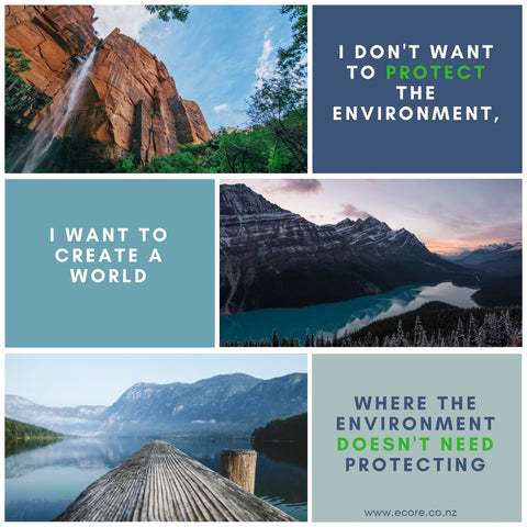 I don't want to protect the environment, I want to create a world where the environment doesn't need protecting.