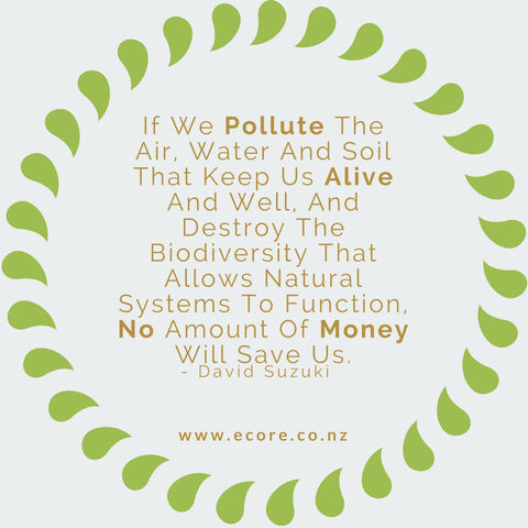 If we pollute the air, water and soil that keep us alive and well, and destroy the biodiversity that allows natural systems to function, no amount of money will save us. - David Suzuki