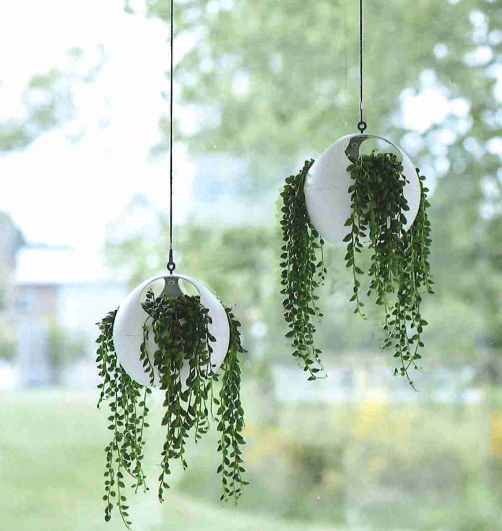 Hanging Planter - B. For Soft