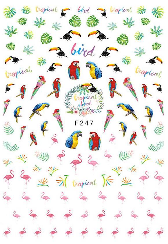 Tropical Bird - Nail Sticker