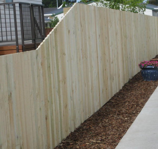 treated pine paling boundary fence