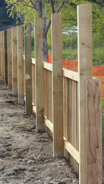 paling fence awaiting trellis