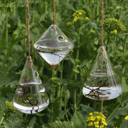 Hanging Clear Glass Terrarium, , Clean minimal gifts for designers and creatives, gift, design, designer - Gifts for Designers