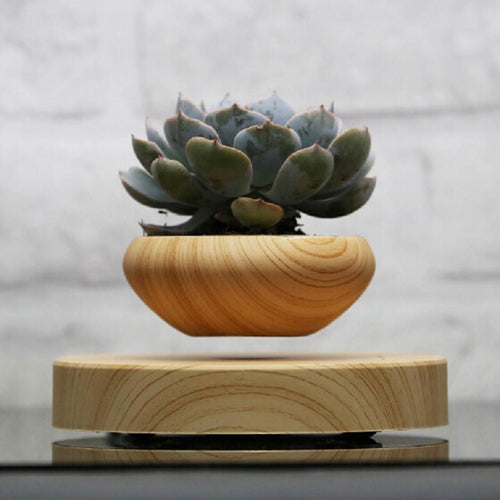 Floating Bonsai Plant Pot