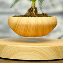 Floating Bonsai Plant Pot, , Gifts for Designers, Clean minimal gifts for designers and creatives, gift, design, designer - Gifts for Designers, Gifts for Architects