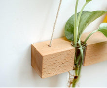 Wood Hydroponic Wall Plant Vase, , Gifts for Designers, Clean minimal gifts for designers and creatives, gift, design, designer - Gifts for Designers, Gifts for Architects