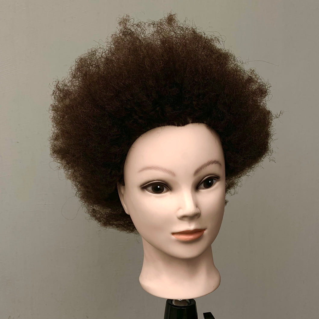Manniquin Head 100% Human Afro