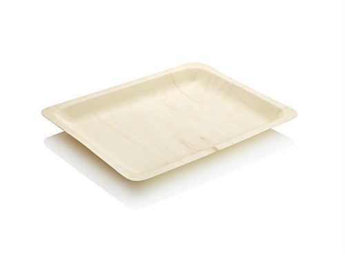 FLAT PLATE LARGE
