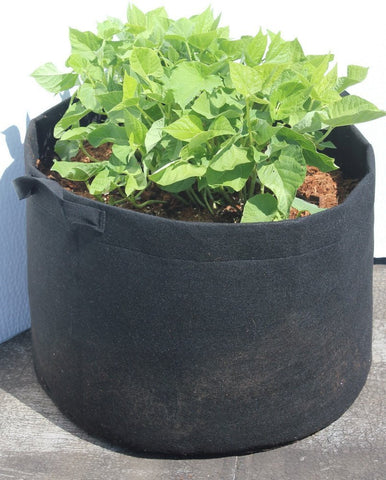 DynaPOT 1 Gallon Garden Planting Aeration Fabric Container