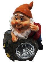 Small Garden Gnome with Solar Light - Solar Statues