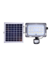 Solar LED Motion Sensor Floodlight - Solar Statues