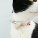 Sweet Summer Honeycomb Cat Collar