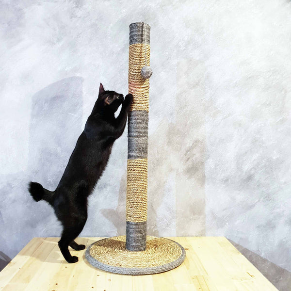 Premium Minimalist Ultra Tall Scratching Pole