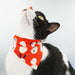 NEW! Frosty Autumn Mornings Reversible Scarf Cat Collar