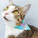 Unicorn Paradise Scarf Cat Collar