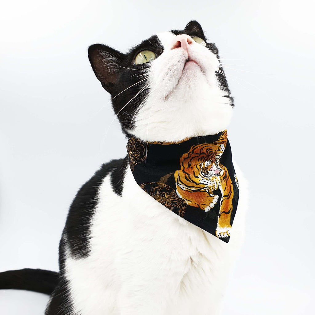 Oriental Fantasy Scarf Cat Collar [Available in a larger size]