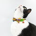 Classic Halloween Bow Cat Collar