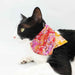 花开富贵 Double Layer Scarf Cat Collar