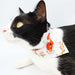 "年年有""魚"" Abundance Scarf Cat Collar"