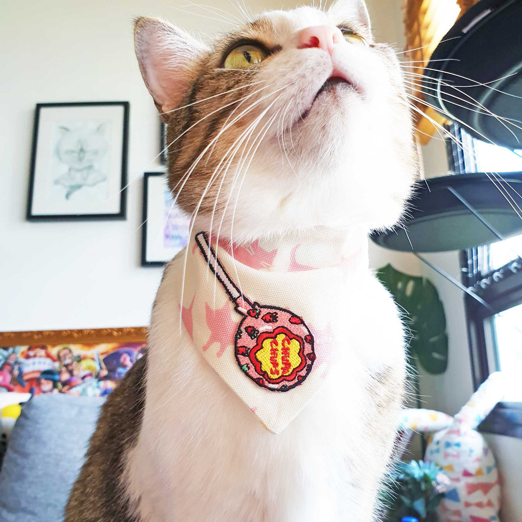 Sweet Lollipop Scarf Cat Collar