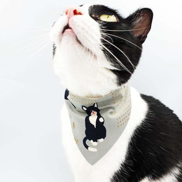 Tux Cat Scarf Cat Collar
