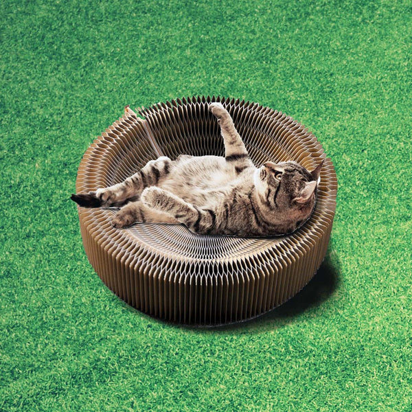 Foldable Japan Cat Scratcher