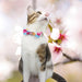 Japan Sakura Spring Scarf Cat Collar - Girls