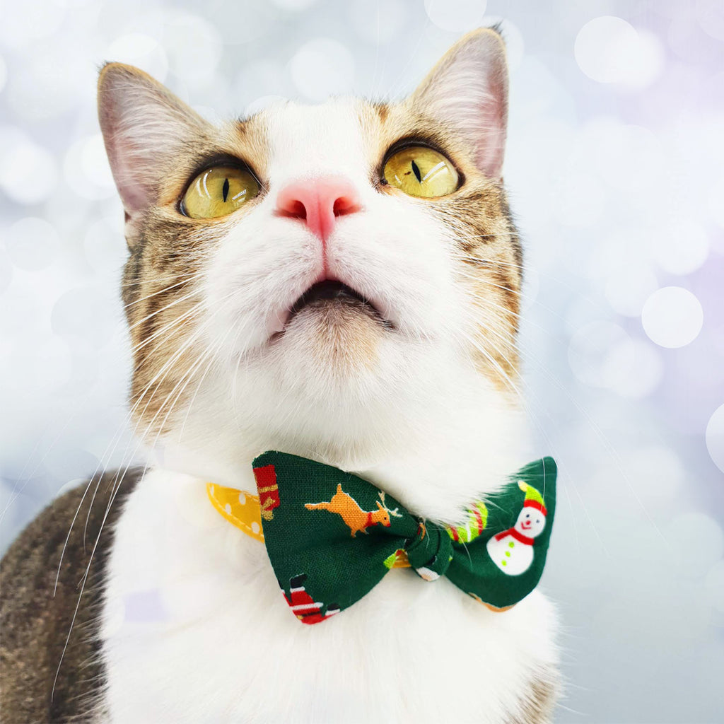 Cat Collar Bow Cute Christmas