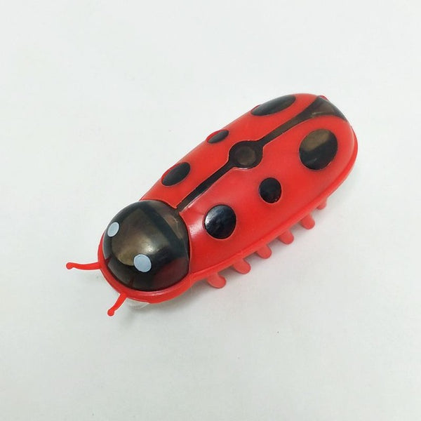 [WhiskersDirect] Interactive Motorized Moving Bug Toy