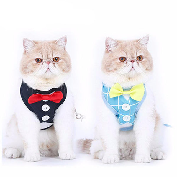 [WhiskersDirect] Cute British Style Jacket Cat Harnesses (2 Colours Available)