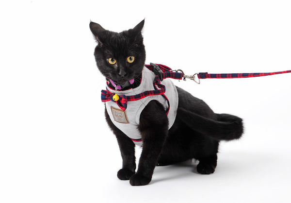[WhiskersDirect] Elegant British Style Jacket Cat Harnesses (2 Colours Available)
