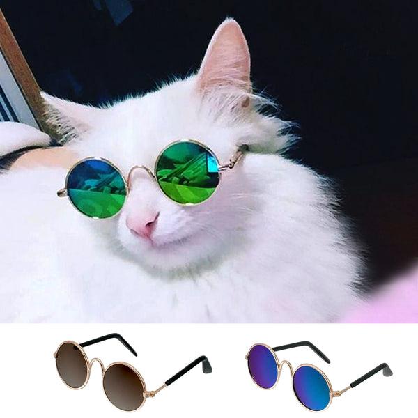[WhiskersDirect] Trendy Pet Sunglasses
