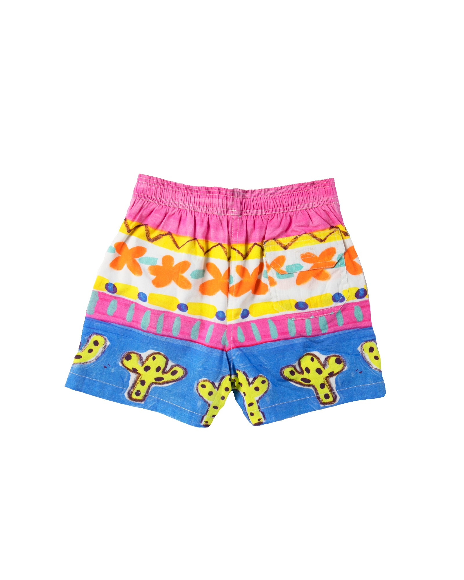 The Desert Cactus Boys Boardshorts by Bonita Bambino - BACK