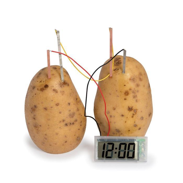 4M Potato Powered Clock | 4M