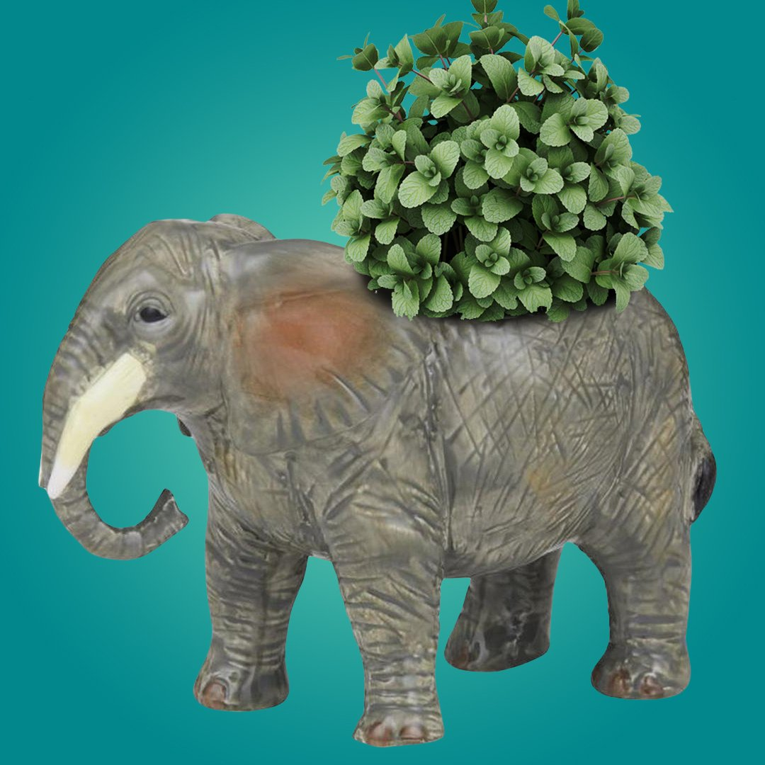 Bernie Elephant Glossed Ceramic Planter Pot 13cm